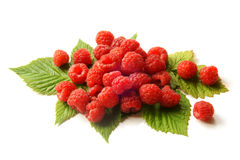 Fresh raspberries with leaves Stock Photos