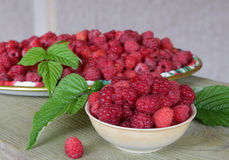 Fresh raspberries with leaves in the Cup. Raspberry in a bowl and in a plate, berries and leaves on a shabby wood. Top view Stock Image