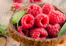 Fresh raspberries Stock Photos
