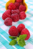 Fresh raspberries and lemon balm on checkered tablecloth, healthy food. Fresh raspberries and leaf of lemon balm on checkered tablecloth, concept of healthy food Royalty Free Stock Images