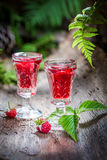Fresh raspberries liqueur made of alcohol and fruits Royalty Free Stock Images