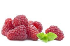 Fresh Raspberries with mint leaf Royalty Free Stock Photo
