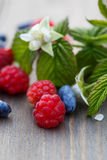 Fresh raspberries and mulberries on a wooden table. And a sprig with leaves and raspberry flower stock images