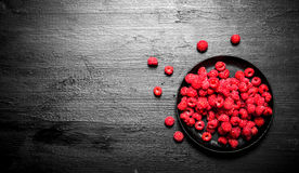 Fresh raspberries in the old plate. On a black wooden background Royalty Free Stock Photography