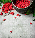 Fresh raspberries in the old pot. On a stone background Stock Photo