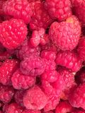 Fresh raspberries at Pazardjik food market in Bulgaria. Pazardjik is in the heart of an agricultural region. Fresh produce is sold at the food market in the town stock photo