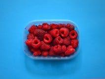 Fresh raspberries in plastic box Royalty Free Stock Photography