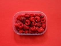 Fresh raspberries in plastic box Stock Photos
