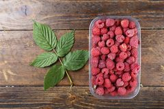 Fresh raspberries in a plastic container on a wooden background. Space for text Stock Images