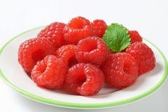 Fresh raspberries. On a plate Royalty Free Stock Photos