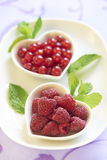 Fresh raspberries and red currant Royalty Free Stock Image
