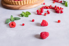 Fresh raspberries and red currants and cake. Tart Royalty Free Stock Photos