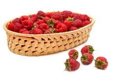 Fresh Raspberries (rubus Idaeus) In The Basket Royalty Free Stock Photos