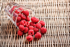 Fresh raspberries. Scattered on wicker tray Royalty Free Stock Photos