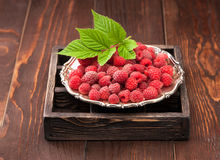 Fresh raspberries in a silver plate Royalty Free Stock Photo