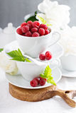 Fresh raspberries in stacked cups Stock Photography