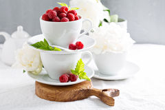 Fresh raspberries in stacked cups Royalty Free Stock Photo