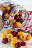 Fresh raspberries on the table. Collected fresh raspberries on the table and in a glass jar Stock Photo