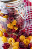Fresh raspberries on the table. Collected fresh raspberries on the table and in a glass jar Stock Photos