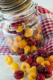 Fresh raspberries on the table. Collected fresh raspberries on the table and in a glass jar Stock Images