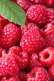 Fresh Raspberries up close. Vertical close up image of fresh Raspberries with focus on center berry Royalty Free Stock Images