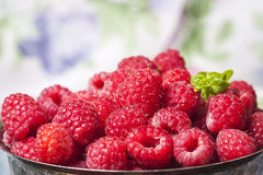Fresh  raspberries in vintage basket, vitamins, healthy food, ve. Gan ingredients. Selective focus Royalty Free Stock Image