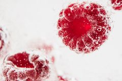 Fresh raspberries in water wiht air bubbles. Close-up photo Stock Images