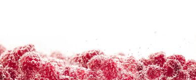 Fresh raspberries in water wiht air bubbles. Close-up photo Royalty Free Stock Image