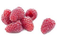 Fresh Raspberries on white Stock Photos
