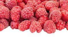 Fresh raspberries on white background Royalty Free Stock Image