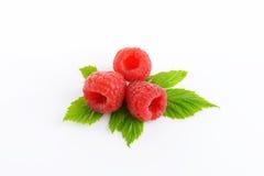 Fresh raspberries on white background. Fresh raspberries with leaves on white background Royalty Free Stock Photos
