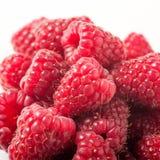 Fresh raspberries on white background Stock Image