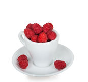 Fresh raspberries in a white cup. Isolated on white background Royalty Free Stock Photos