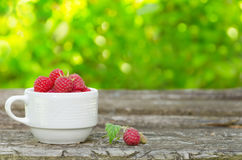 Fresh raspberries in white cup. On wooden rustic table. Copy-space composition Royalty Free Stock Photos