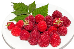 Fresh raspberries on white plate. Isolated on white background Royalty Free Stock Photos