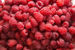 Fresh raspberries in a white plate. Stock Photo Stock Photos