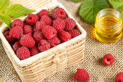 Fresh raspberries in a wicker box and honey, green leaves.  Royalty Free Stock Image