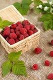 Fresh raspberries in a wicker box and honey, green leaves Stock Photo