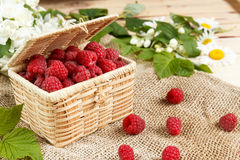 Fresh raspberries in a wicker box and honey, green leaves Stock Photography