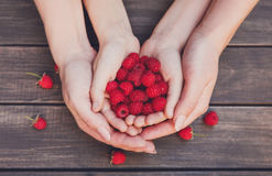 Fresh raspberries in woman and baby hands on wood background Royalty Free Stock Photography