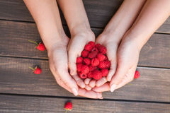 Fresh raspberries in woman and baby hands on wood background. Mother and child with raspberries harvest. Hands with berries on wood background, top view Stock Photography