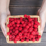 Fresh raspberries in woman`s hands on wood background. Raspberries basket in female hands on brown rustic wood background. Harvest of healthy food concept Royalty Free Stock Image