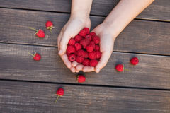Fresh raspberries in woman's hands on wood background. Handful of fresh raspberries in woman's hands on brown rustic wood background. Harvest of healthy food Stock Photos