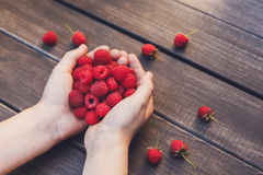 Fresh raspberries in woman`s hands on wood background Royalty Free Stock Photos