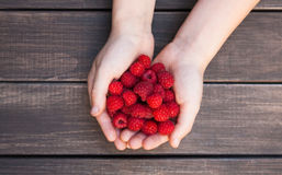 Fresh raspberries in woman`s hands on wood background Stock Photo