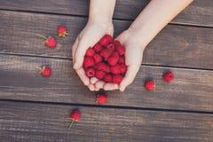 Fresh raspberries in woman`s hands on wood background. Handful of fresh raspberries in woman`s hands on brown rustic wood background. Harvest of healthy food Royalty Free Stock Image
