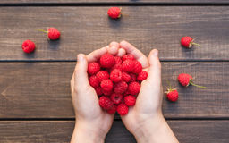 Fresh raspberries in woman`s hands on wood background. Handful of fresh raspberries in woman`s hands on brown rustic wood background. Harvest of healthy food Royalty Free Stock Images