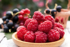 Fresh raspberries in a wooden plate on a background of garden berries. Healthy food Stock Images