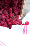 Fresh raspberries. On a wooden table Royalty Free Stock Photo