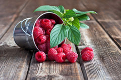 Fresh raspberries on wooden table. Fresh organic raspberry in bucket Stock Photos